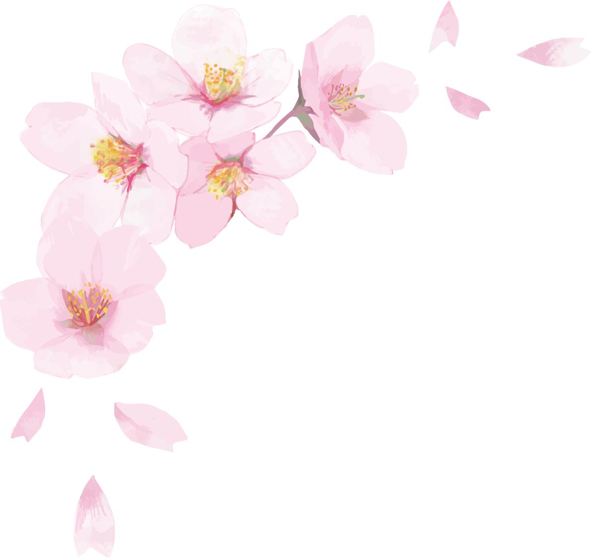 3月20日(金・祝)合唱松本会場練習中止のお知らせ